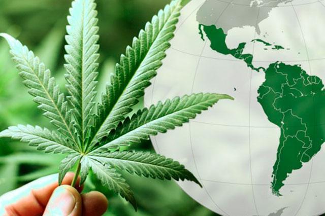 marihuanalegal